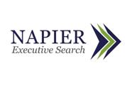 Napier Executive Search Logo